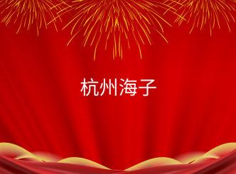 杭州海子数码科技有限公司